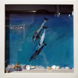 Dolphins Shadow Box Original Painting