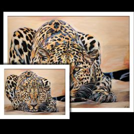 Leopard Fine Art Prints