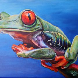 painting of a red eye tree frog by Ivy Bath