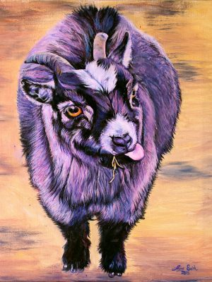 HaySnack the Purple Goat