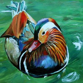 Painting of a Mandarin Duck by Ivy Bath